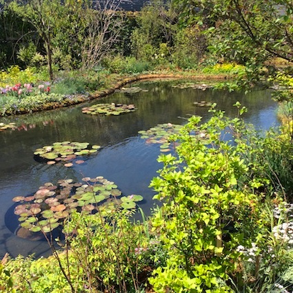 150503_食と緑の空中庭園2.jpg