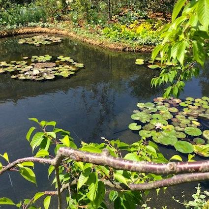 150503_食と緑の空中庭園3.jpg