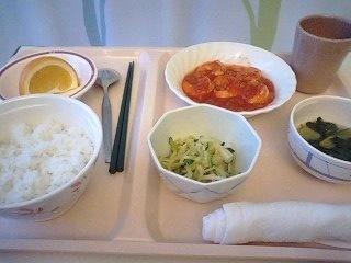 110404_一般食3.jpg
